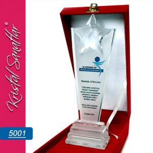 Yıldızlı ödül plaket